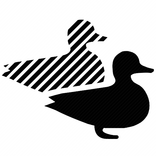 Vector image №10796 by keywords clone, duck, bird, copy, dublicate, biology