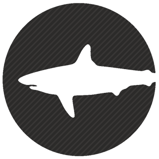 Vector image №12313 for design by keywords shark, round,